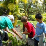Teacher Sunny Seal-Laplante and students Aiden and Noah water the seedling.