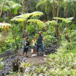 Dayson and Garnet with teacher in the Native Forest.