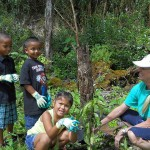 Teacher Sunny Seal-Laplante and students Manini, Dayson and Garnet plant a seedling.
